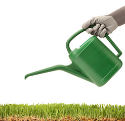 A person holding a watering can and green glass