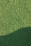 Artificial grass fake turf synthetic lawn field macro closeup wi poster