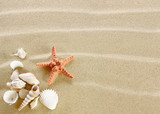 Fototapety Starfish and shells on a sand beach