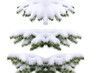 Christmas tree with fresh snow