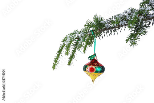 isolated multicolored Christmas ornament on a pine branch