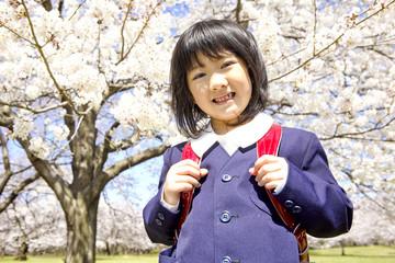 桜の前に立つ小学生女子
