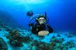 Female Scuba Diver in Tropical Sea - 33748439