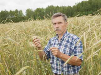 The farmer in the field