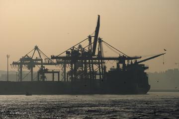 Mobile cranes ship