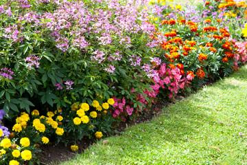 Blumenbeet und Rasen