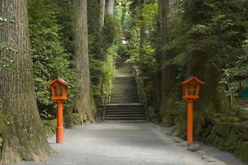 箱根神社参道