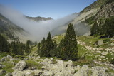 mist gathering in Pyrenees valley poster