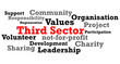 Постер, плакат: Third Sector Word Map