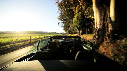 Driving Through the Vineyards of Napa Valley