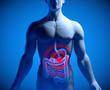 Magenschmerzen und Bauchschmerzen