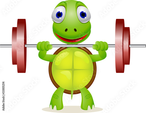 funny turtle lift barble