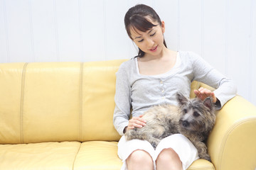 犬を撫でている女性