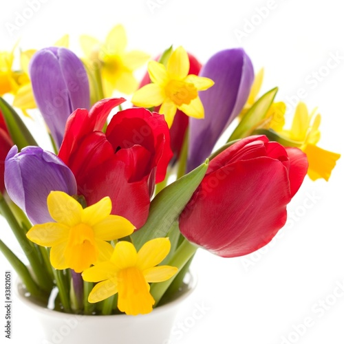 Tulips, daffodils and crocuses