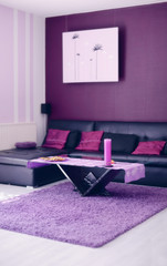 Moderner Wohnraum lilac