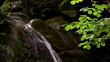 Waterfall in a forest in the North Caucasus