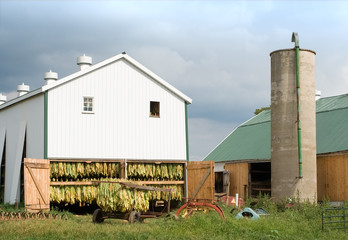 Tobacco barn on an Amish farm in Lancaster County
