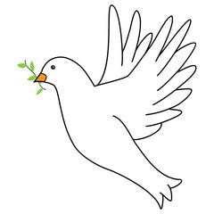 Weiße Taube freigestellt
