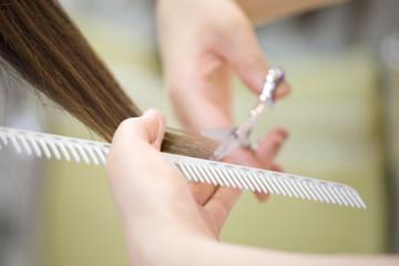女性の髪をカットする美容師の手元