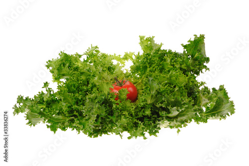 green salad and tomato isolated on the white background