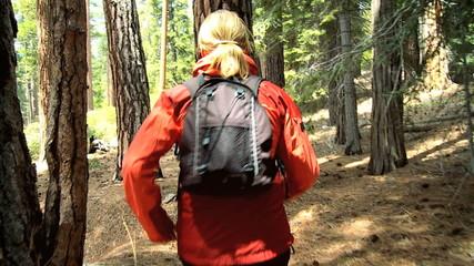 Lone Female on Trek Through a National Park