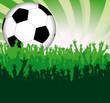Fußball Jubel Grün
