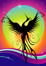 Phoenix bird  re-birth