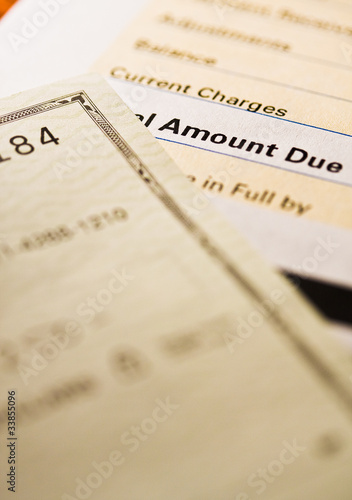Check and credit card statement