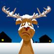 Reindeer all snowed on
