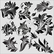 Elegant Flourish Elements Collection