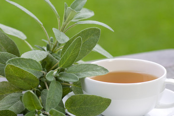Sage tea served outside