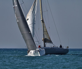 Italy, Sicily, Mediterranean Sea, sailboats race