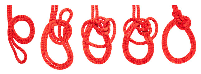 knot series : bowline on a bight