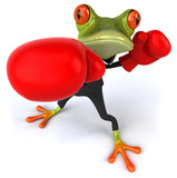 Fototapety Business frog