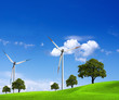 Wind energy and green nature