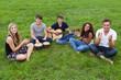 junge leute sitzen im gras und musizieren