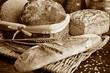 Set of freshly baked bread in sepia tone