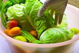 Wash before help to prevent E. coli poster