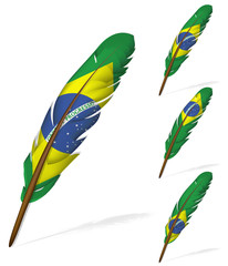 abstract Brazil flag feather isolated on white background