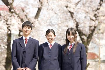 桜の下で笑っている中学生男女