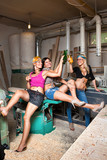 sexy girls in the carpentry shop carpenters poster