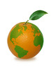 orange with world map