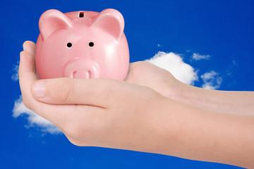 money saving concept. hands hold piggy bank.