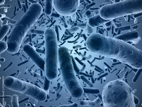 Leinwanddruck Bild Bacteria seen under a  scanning microscope