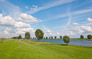 A typical Dutch landscape