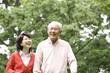 公園を散歩する老夫婦