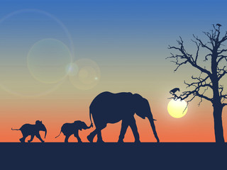 Happy family of elephants in the desert