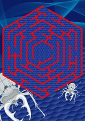 steel bealte labyrinth