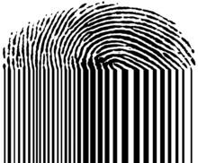 Linii papilarnych i kod kreskowy