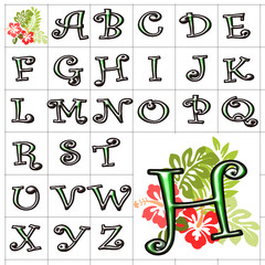 ABC Alphabet background hibiscus curlz green design